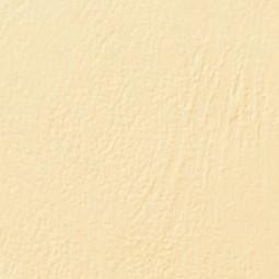 Couvertures Grain Cuir A3...